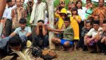 Sabung Ayam Selokgondang 'Mandek', Pasca Kasus Pembacokan