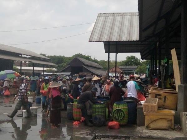 Harga Ikan Vaname dan Bandeng Meroket Pelanggan Meradang