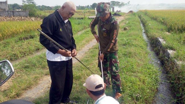 Babinsa Koramil 0815/09 Mojosari Aktif Dampingi Ketahanan Pangan