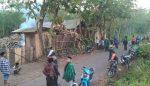 Maling di Lumajang Tambah Kurang Ajar, Sapi Kyai Disikat