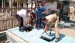 Komisi III Bondowoso Minta Pipa Saluran Limbah Diganti