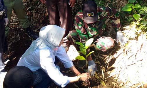 SIMBOLIS:DAMPINGI:Dan Pos Ramil 0818/34 Junrejo Pelda Joko Ismanu   bersama Walikota Batu Dewanti Rumpoko melaksanakan penanaman pohon secara simbolis di sumber mata air Jeding Desa Junrejo
