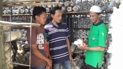 Program Pemberdayaan Masyarakat, Alfamart Gelar Pelatihan Budidaya Jamur Tiram