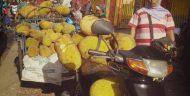 Unik, Pasar Buah Kecamatan Klakah Kabupaten Lumajang