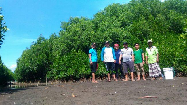 Melirik Potensi Wisata Pantai dan Hutan Mangrove di Desa Ketah